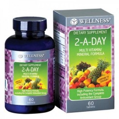 Wellness Multivit Mineral 2 A Day 60 Tablet